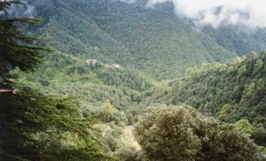 Mountain view outside Mussoorie